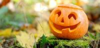 Boemerang Oktober | scouts4811.be